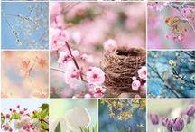 spring_summer moodboard