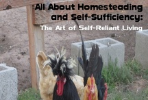 Homesteading Books iPad / Self-sufficiency by definition is a state in which someone or something can self-sustain oneself without using outside resources. If you take that statement literally, it is impossible to obtain. Each and every living creature on this planet is dependent upon outside resources in order to survive. / by Self Sufficient Living & Homesteading