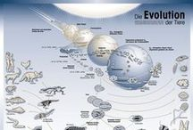 Science infographics / Infographics about science data and topics