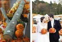 Halloween Weddings / Love that spooky time of year? Here's some inspiration for Halloween wedding inspiration-- your decorations are sure to be unique!