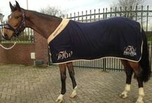Horse Rugs - Top Horse Outlet / Rugs that combine beauty, functionality and freedom for you and your horse.