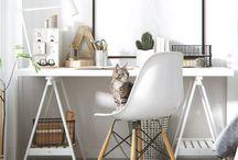 Furniture / Decor