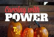 Fall Fun! / Cooler weather means hayrides, apple and pumpkin picking, warm fireplaces, hearty gardens, tailgating, raking leaves, and so much more! Get everything you want & need for fall Out Here at Tractor Supply.
