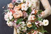 Florals / Posies and Pansies