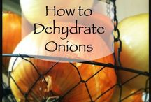 Food Storage & Dehydrating Tips / How to dehydrate foods, food storage shelving ideas, and preparedness tips. / by Arlene Price
