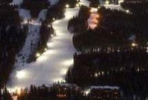 Ski / by Steph Robinson