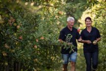 From Tree to Store / From the Chelan Valley in Washington state, New Zealand's Hawke's Bay and the orchards of Chile, take a behind the scene look into Envy Apples.
