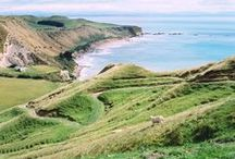 New Zealand / Discover the beauty of New Zealand, where Envy Apples first came into fruition.