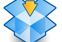 Online File Sharing / Online file sharing service like dropbox is a must have tool for every virtual assistant and employer. You can easily share large files and folders with your employees without any cost.