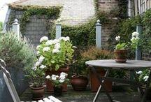 city garden * balconi e terrazzi