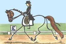 Hästar dressyr