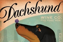 ANIMALS: dachshunds / I'm a lifelong dachshund owner. These little dogs are the cutest! / by Karen Ziemkowski