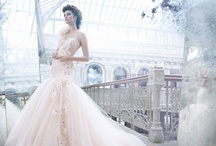 Wedding Dresses And Gowns / by Beadz 2 Pleaz