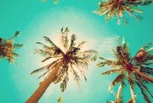 Summer / by Ashley Huffman