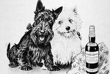 DESIGN: vintage ads / by Karen Ziemkowski
