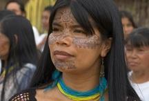 La perle d'ambre - Les farons / Habitants du sud du continent annexe. Ils vivent dans la jungle, ont la peau cuivrée, les cheveux très noirs. Ils sont plus petits que les autres humains.