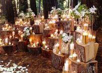 Fairytale woodland wedding inspiration / Ideas and inspiration for planning your fairytale woodland wedding.