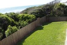 Backyard/Frontyard / Backyard is fenced in and very dog friendly.  Go through gate for sandy path to beach.