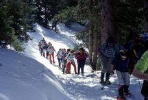 Cortina & Dolomites