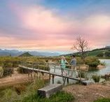 Most Romantic Spots in the South African Winelands / Cozy fireplaces, fine cheeses, sensual wines and scrumptious chocolate: the winelands is the perfect place for love this winter. Visit this tour at http://exploresideways.co.za/product/winter-romance-wine-tour