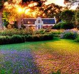 Glorious Gardens in South Africa / Celebrate all the things rooted and green with this tour of some of the most beautiful and historic gardens in the Cape. Visit this tour at http://exploresideways.co.za/product/garden-wine-tasting-tour