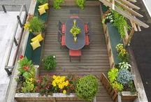Architecture * Pocket backyard / balcony / terrace Design