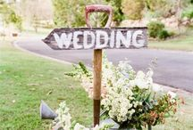 Wedding / • Someday