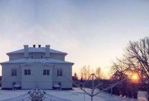 Winter wonderland / • Winter it's magical