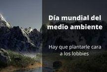 Ecologia Ecocidio / Hablamos de medio ambiente, sostenibilidad y ecología