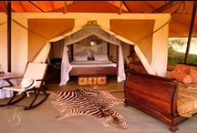 Chic safari camps of Africa / Tents, hotels and star beds / by Explorations Africa