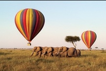 Activities in Africa / Lazy, crazy and in-between / by Explorations Africa