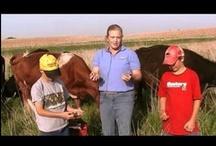 Meet A Nebraska Farmer & Rancher