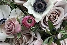 flower things / A beautiful collection of floral arrangements to set the mood  / by One Heart Films
