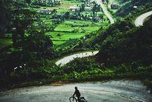 VIETNAM | Vivacious
