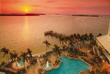 FLORIDA | Festive