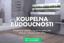Koupelna BUDOUCNOSTI / Koupelnový nábytek a využití koupelny jako místa pro relaxaci v roce 2025
