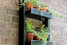 Gardening Ideas / Quirky ideas for your garden