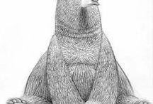 Character pencil drawing