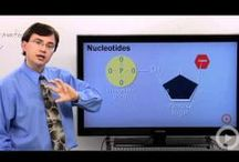 Education: Biology Videos / Helpful videos biology teachers can use in their classroom to help students. Great for teachers that use a flipped classroom model.