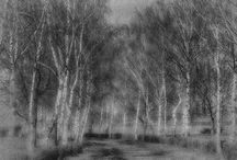 black/white photography / Black and white Fine Art photography