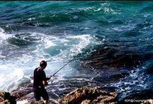 Coast to Coast / Le meraviglie della Sardegna  Frammenti di intertestualità Saggi e abstracts sull'arte della Parola e del Segno