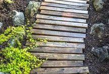 Garden Projects / Making your Garden Beautiful