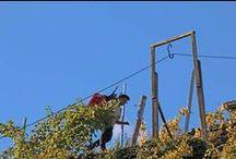 Agricoltura eroica / L'agricoltura eroica corre un alto rischio di estinzione in Europa per motivi legati agli elevati costi di lavorazione, all'impegno ed alla fatica richiesti per mantenere coltivati i piccoli appezzamenti strappati alla montagna