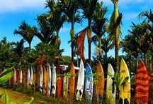 Maui Travel / Photos and Tips for the trip of your dreams to Maui.