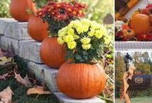 Halloween, Fall, Thanksgiving Ideas