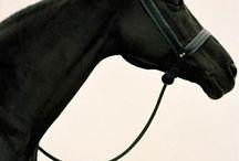 Pferde... alles Glück dieser Erde / ... liegt auf dem Rücken der Pferde!