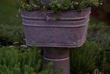 Giardini e vasi