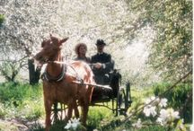 """Anne of Green Gables Events / """"Anne of Green Gables"""" by L.M. Montgomery inspired decor, quotes, images, etc. for weddings, kindred spirit gatherings or vintage, rustic and magical events set amongst the world of Anne's Prince Edward Island.   Anne of Green Gables Wedding"""