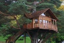 Tree House  / by Ken Day