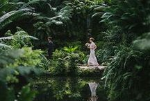 Land Before Time Events / Mad scientist, living creativity borrowing from dinosaurs, romance of flowers, geometric lines like greenhouses and playful abandon of greenery imagination. Dinosaur wedding inspiration. Botanical wedding inspiration.  Fern event. Museum inspired wedding. Capture the past with the creativity of the future. Jurassic World Inspired Event